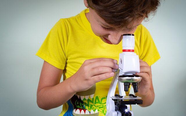 mejores proyectos de la ciencia para niños sobre el Cambio Climático